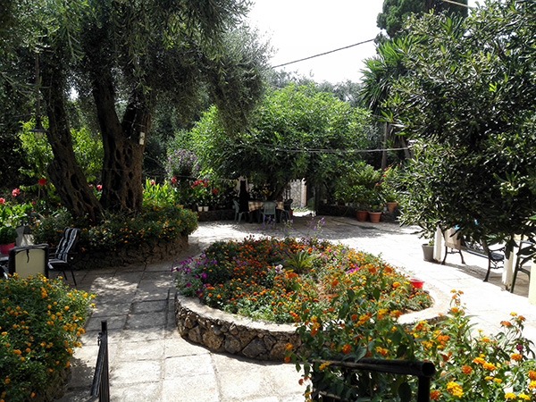 Hagen utenfor leiligheten på Korfu.